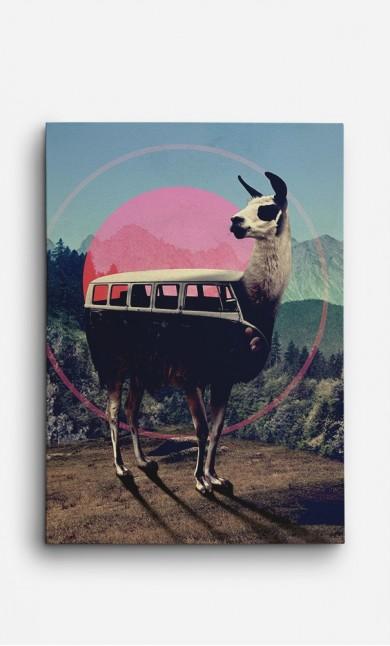Canvas Llama Kombi