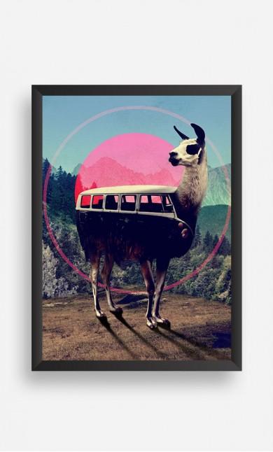 Frame Llama Kombi