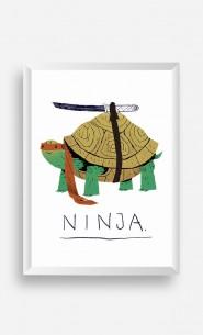 Frame Ninja Turtle