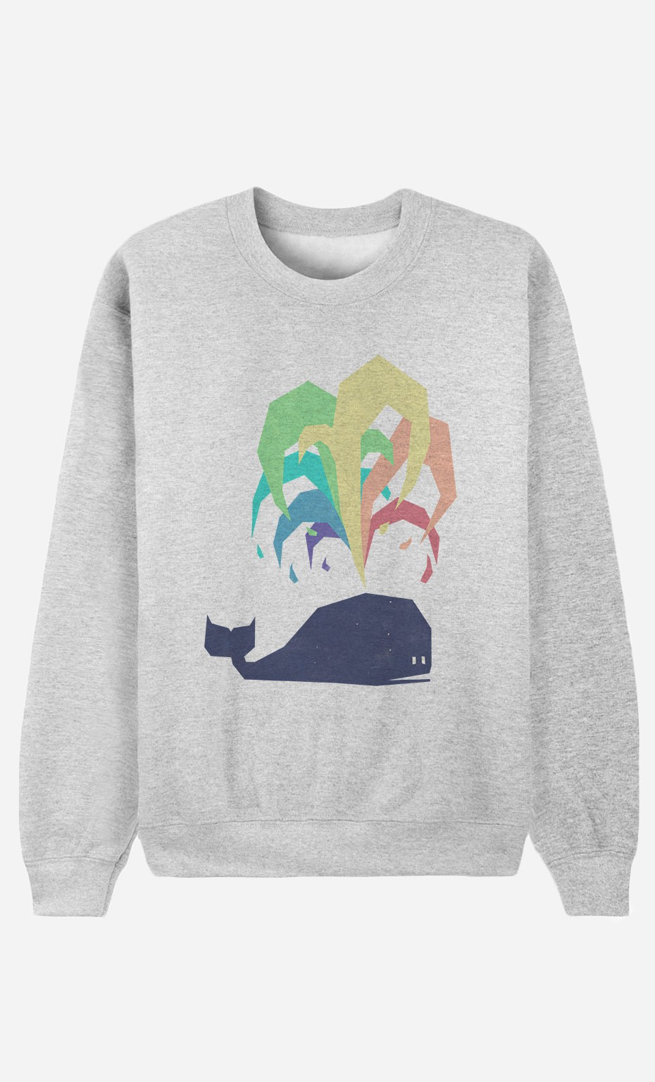 Sweatshirt Rainbow Whale